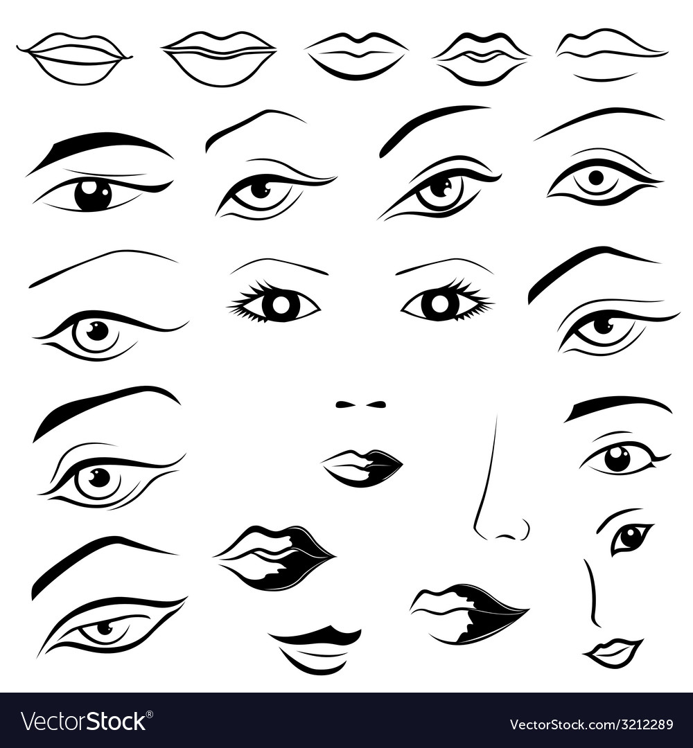 Human eyes lips eyebrows and noses vector | Price: 1 Credit (USD $1)