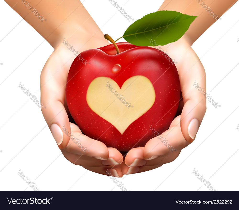 A heart carved into an apple vector | Price: 1 Credit (USD $1)