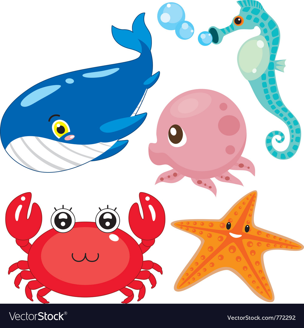Sea animal vector | Price: 1 Credit (USD $1)