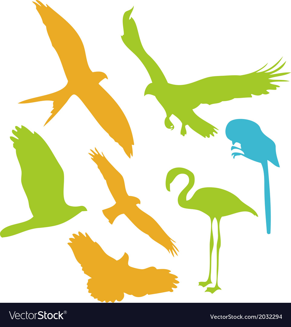 Birds digital clipart 2 vector | Price: 1 Credit (USD $1)