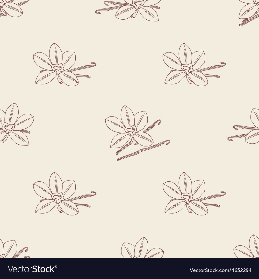 Seamless pattern with sketched vanilla flower and vector | Price: 1 Credit (USD $1)