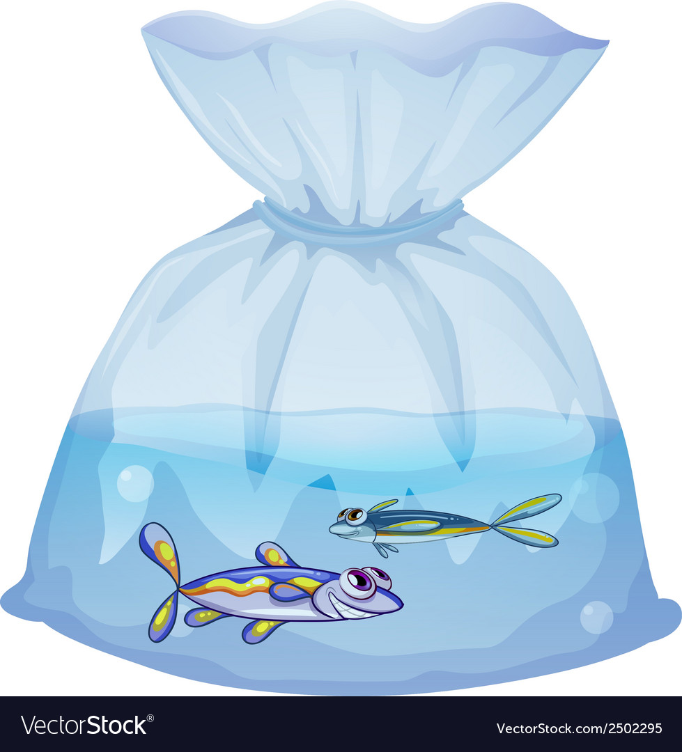A plastic pouch with two fishes vector | Price: 1 Credit (USD $1)