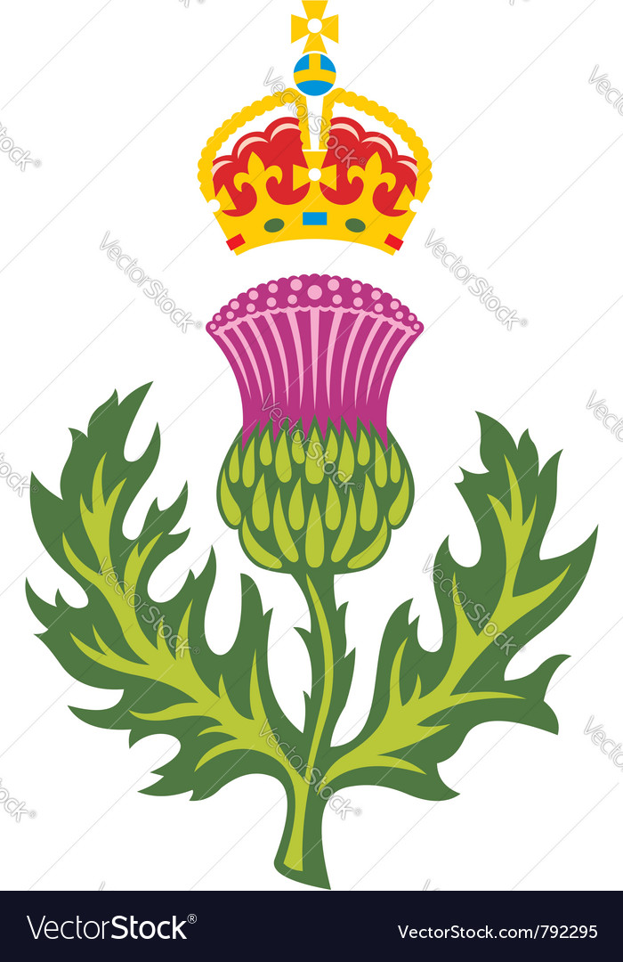 Badge of scotland vector | Price: 1 Credit (USD $1)