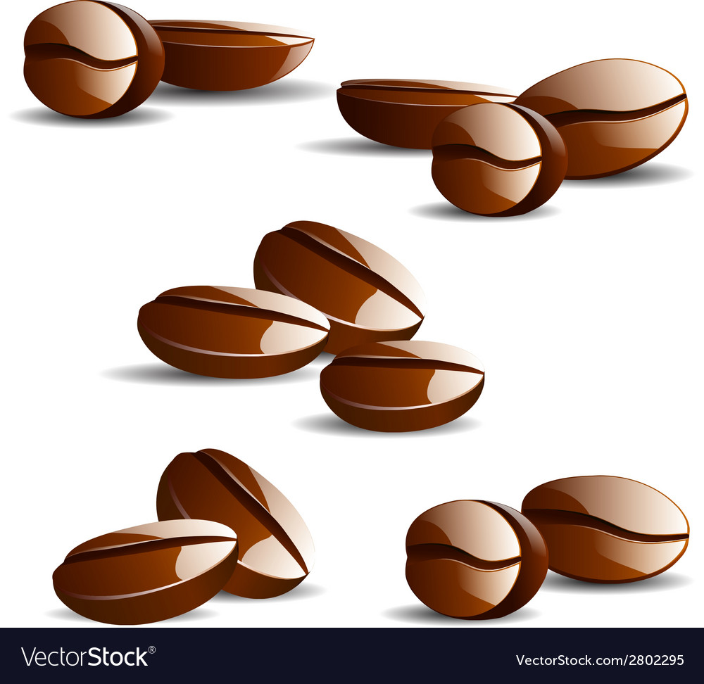 Single coffee bean with leaf isolated on white vector | Price: 1 Credit (USD $1)