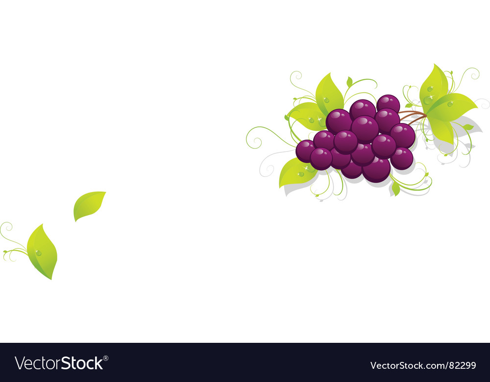 Grapes background vector | Price: 1 Credit (USD $1)