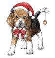 Beagle hat vector