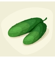 Stylized of fresh ripe cucumbers vector