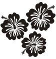 Honolulu flower vector