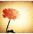 Vintage pink rose vector