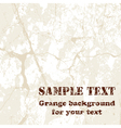 Grange background vector