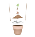Terracotta flower pots with soil and young tree vector