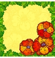 Poppy flowers greeting card template vector