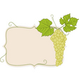 Grapes with frame vector