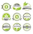 Organic elements vector