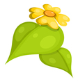 Yellow flower with leaves cartoon eps10 vector