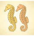 Sketch cute seahorse in vintage style vector