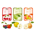Three labels with fruits vector