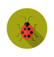 Red lady bug flat icon vector
