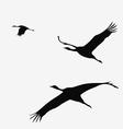 Crane pack vector