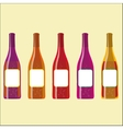 Set of colorful wine bottles with sparkles vector