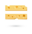Cheese equal mark symbol isolated on white vector