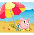 Pig at the beach vector