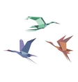 Herons cranes and storks vector