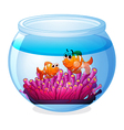 An aquarium with two orange fishes vector