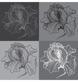 Print with four graphic monochrome flowers vector
