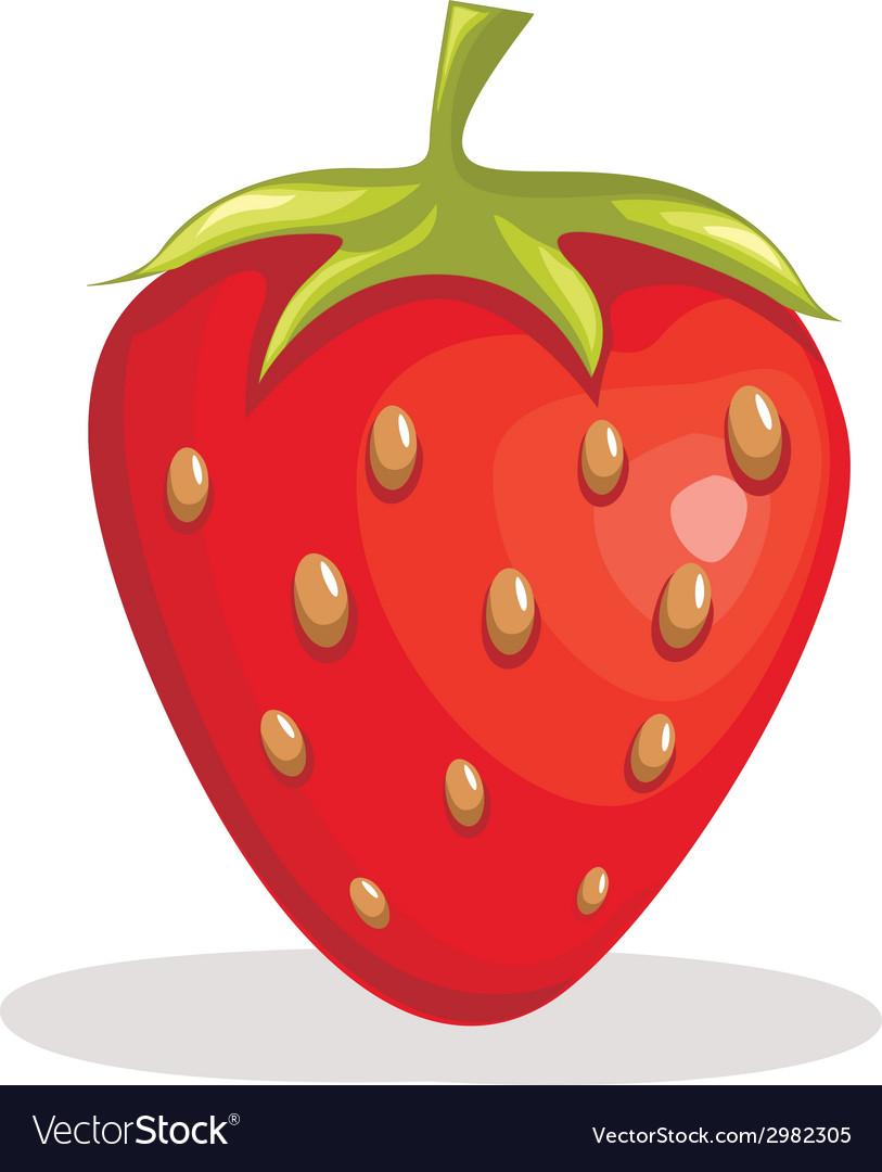 Strawberry vector | Price: 1 Credit (USD $1)