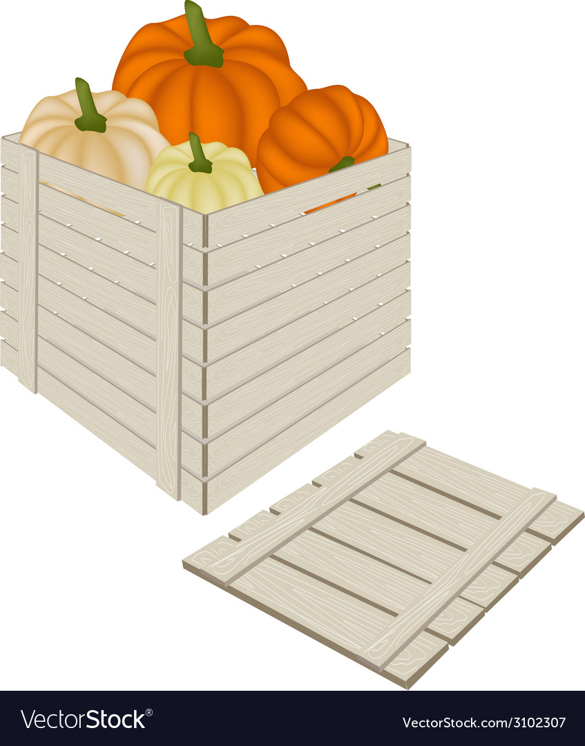A pile of pumpkins in wooden cargo box vector | Price: 1 Credit (USD $1)