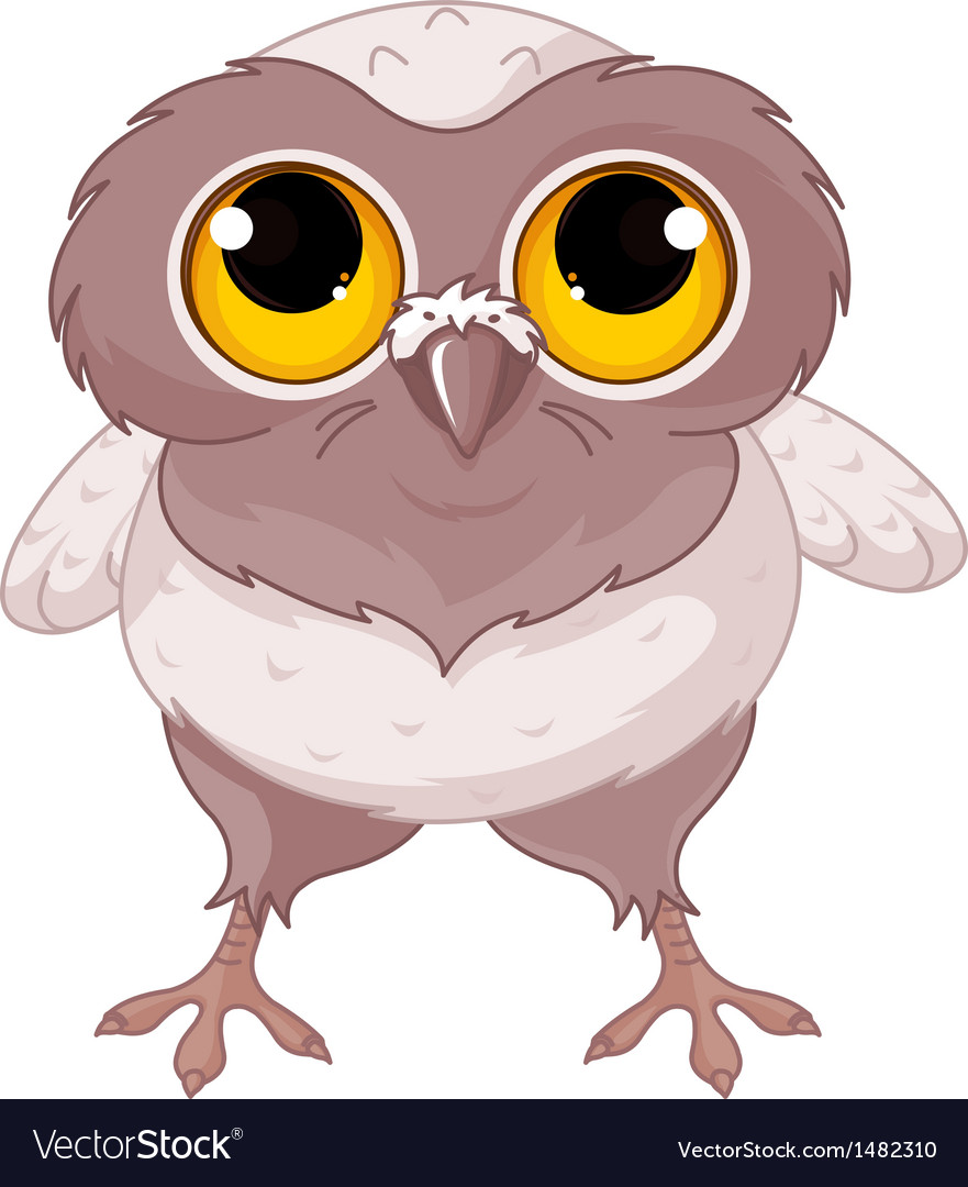 Baby owl vector | Price: 3 Credit (USD $3)