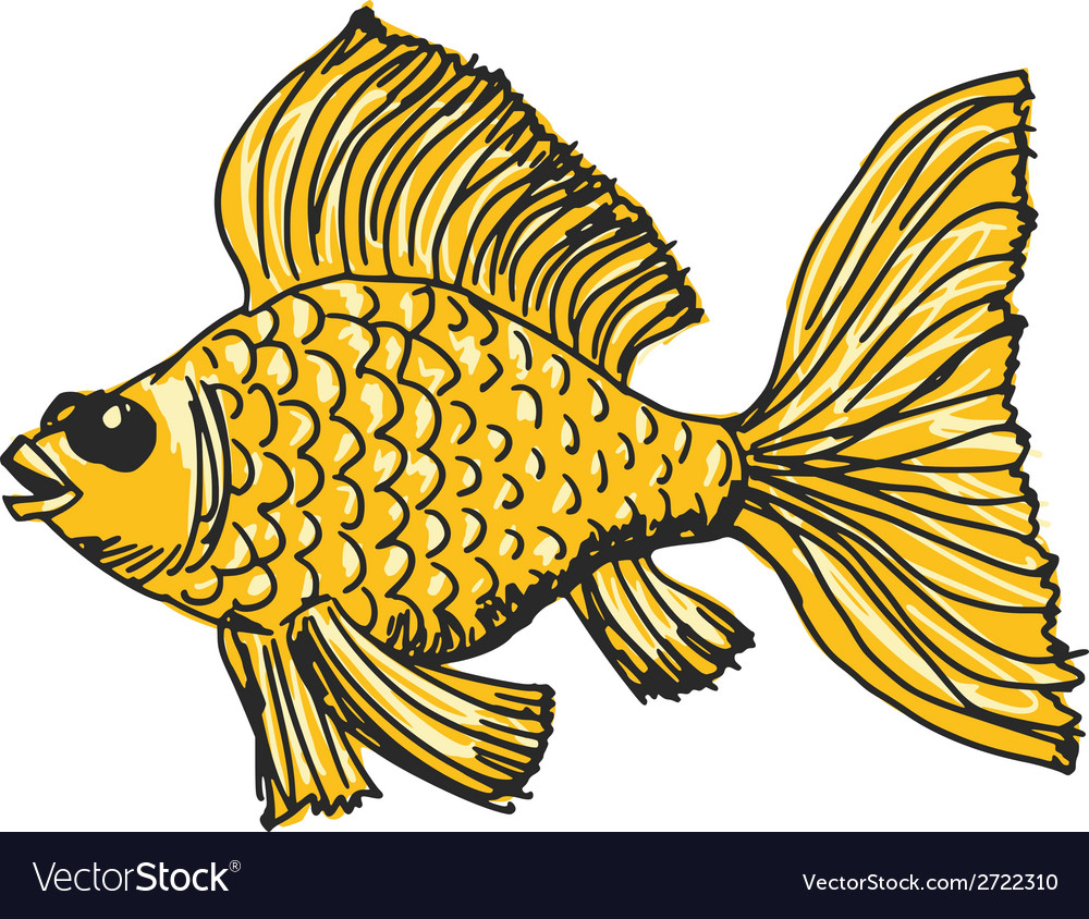 Goldfish vector | Price: 1 Credit (USD $1)
