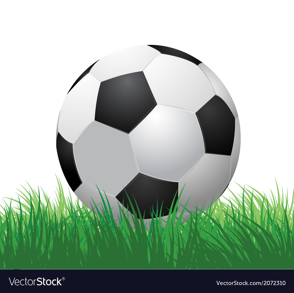 Soccer ball on green grass vector | Price: 1 Credit (USD $1)