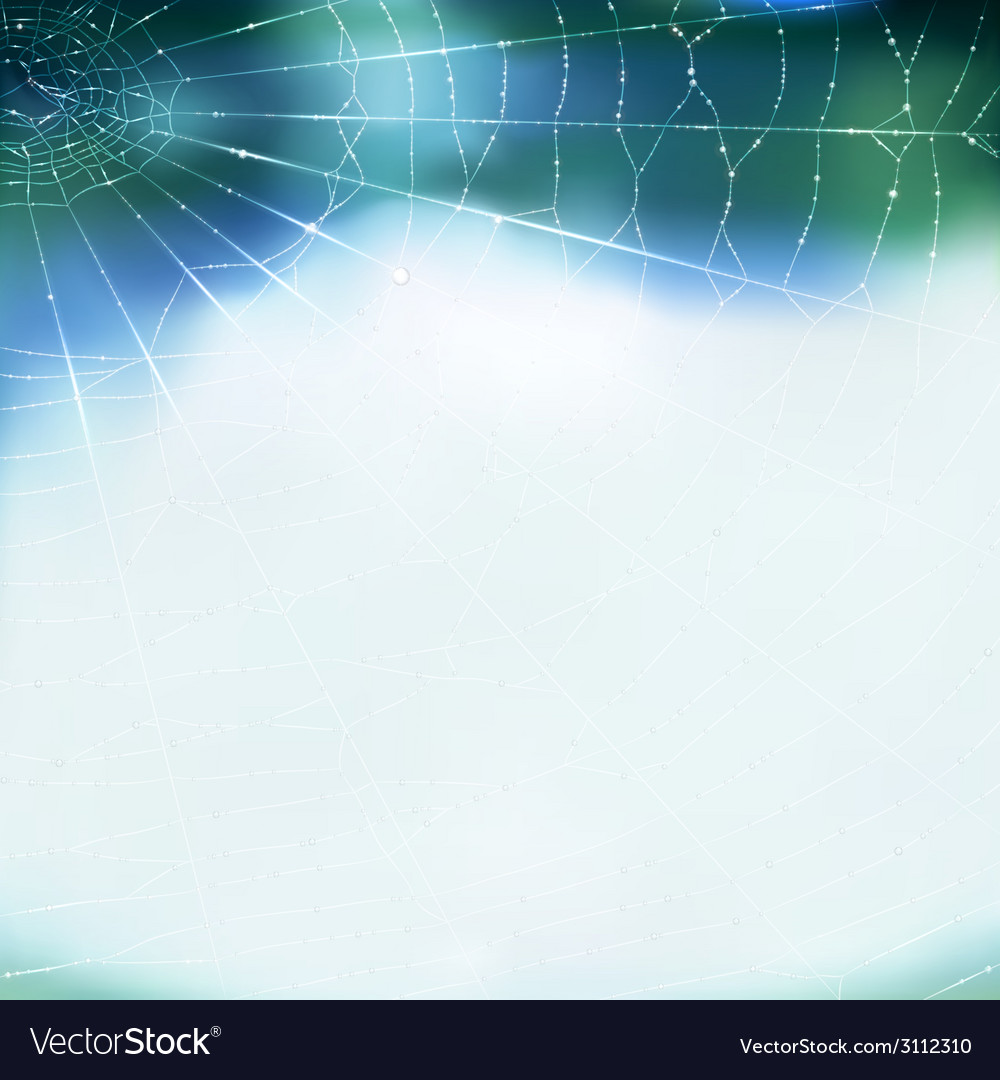 Spiderweb vector | Price: 1 Credit (USD $1)