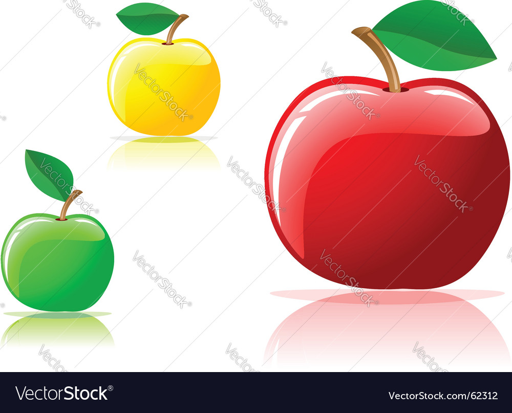 Appetizing apples vector | Price: 1 Credit (USD $1)