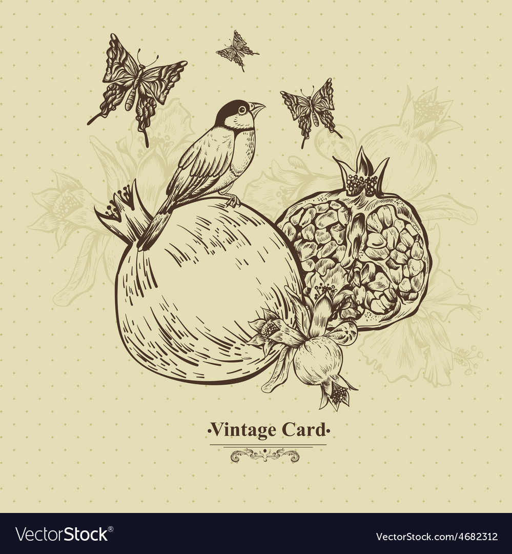 Vintage greeting card tropical fruit flowers vector | Price: 1 Credit (USD $1)