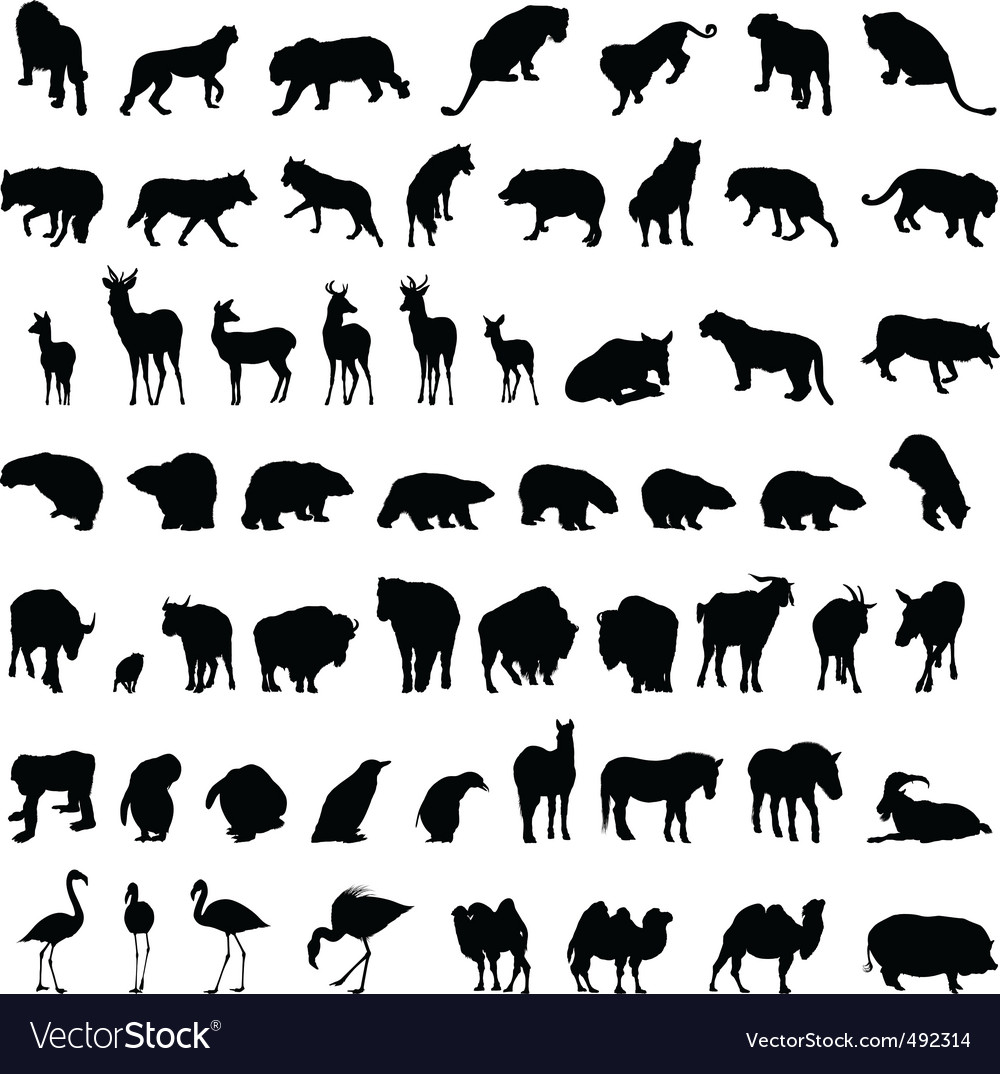 Animal set vector | Price: 1 Credit (USD $1)
