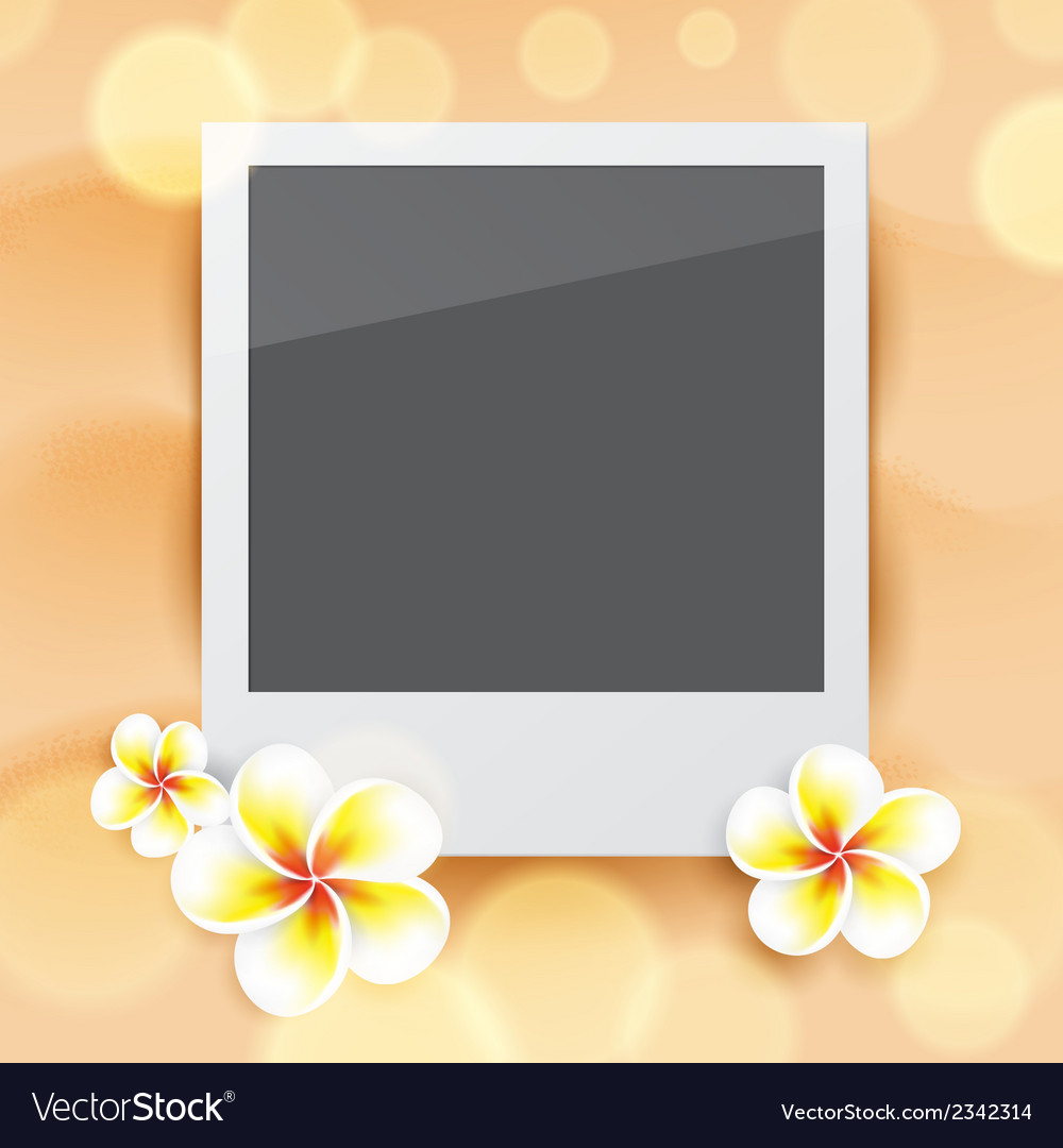 Blank photo on sand vector | Price: 1 Credit (USD $1)