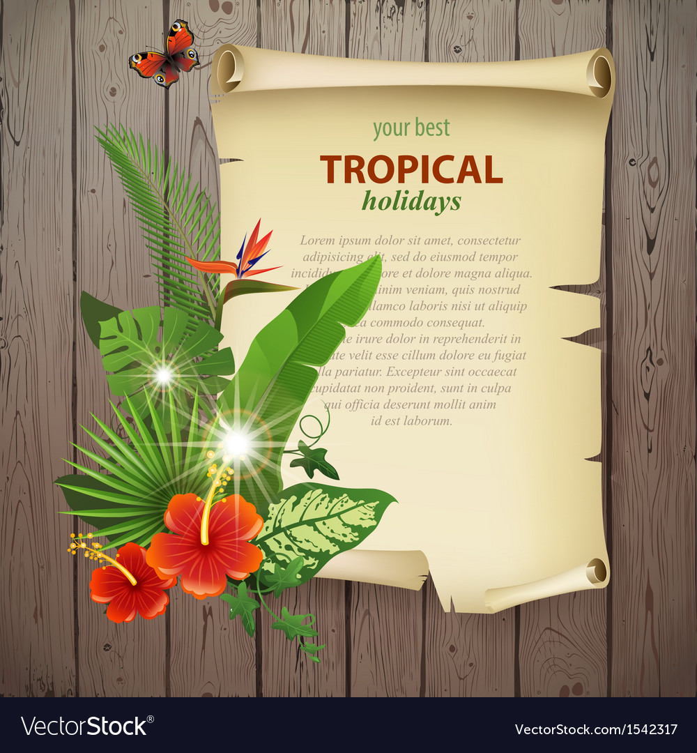 Tropical banner vector | Price: 3 Credit (USD $3)