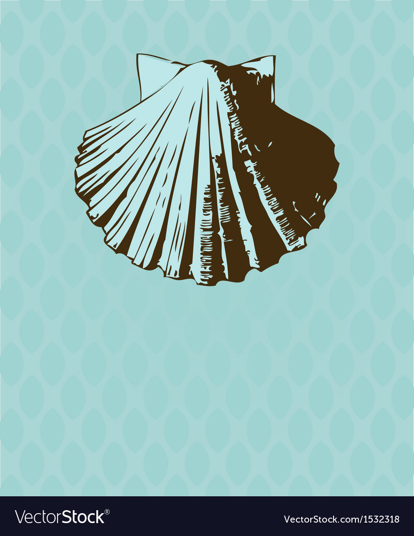 Vintage card with hand drawn shell vector | Price: 1 Credit (USD $1)