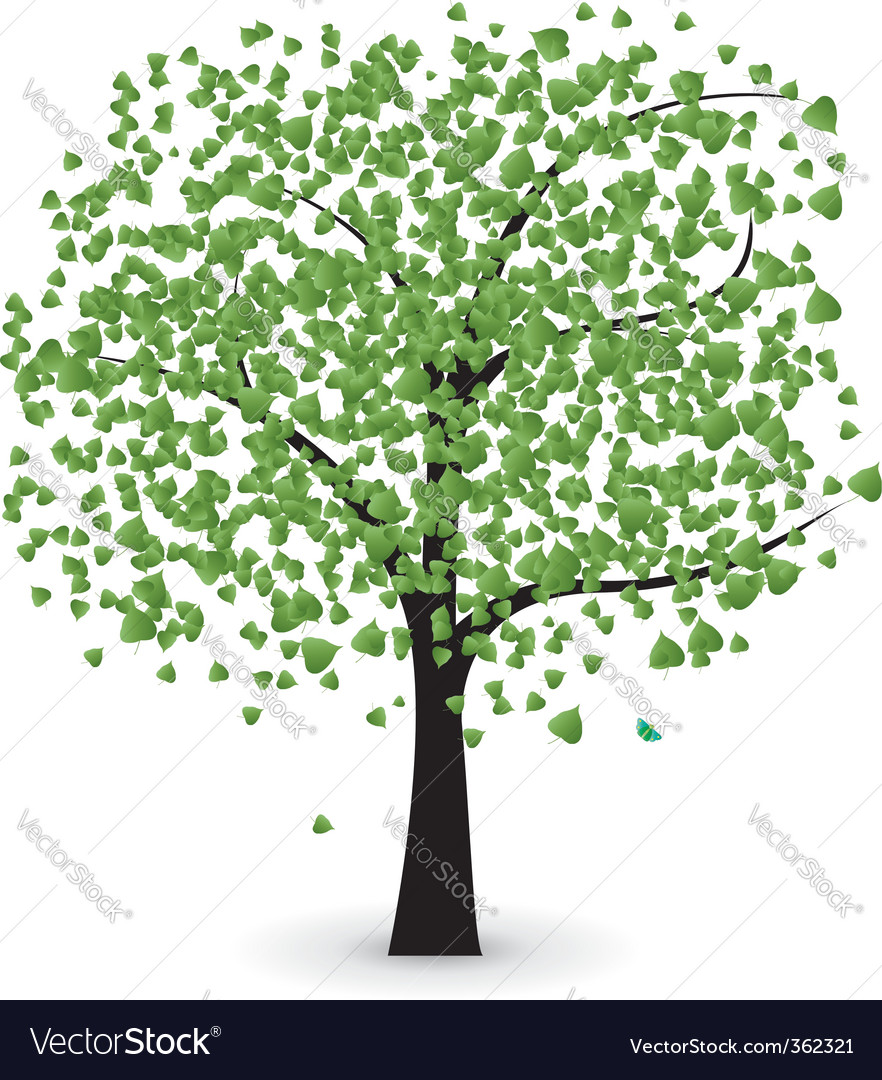 Tree with green leaves vector   Price: 1 Credit (USD $1)