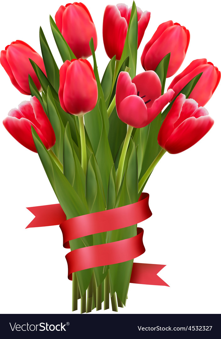 Celebration background with red tulips and ribbons vector   Price: 3 Credit (USD $3)