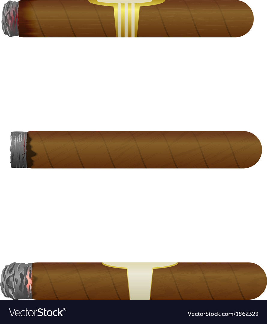 Set of cuban cigars isolate on white background vector | Price: 1 Credit (USD $1)