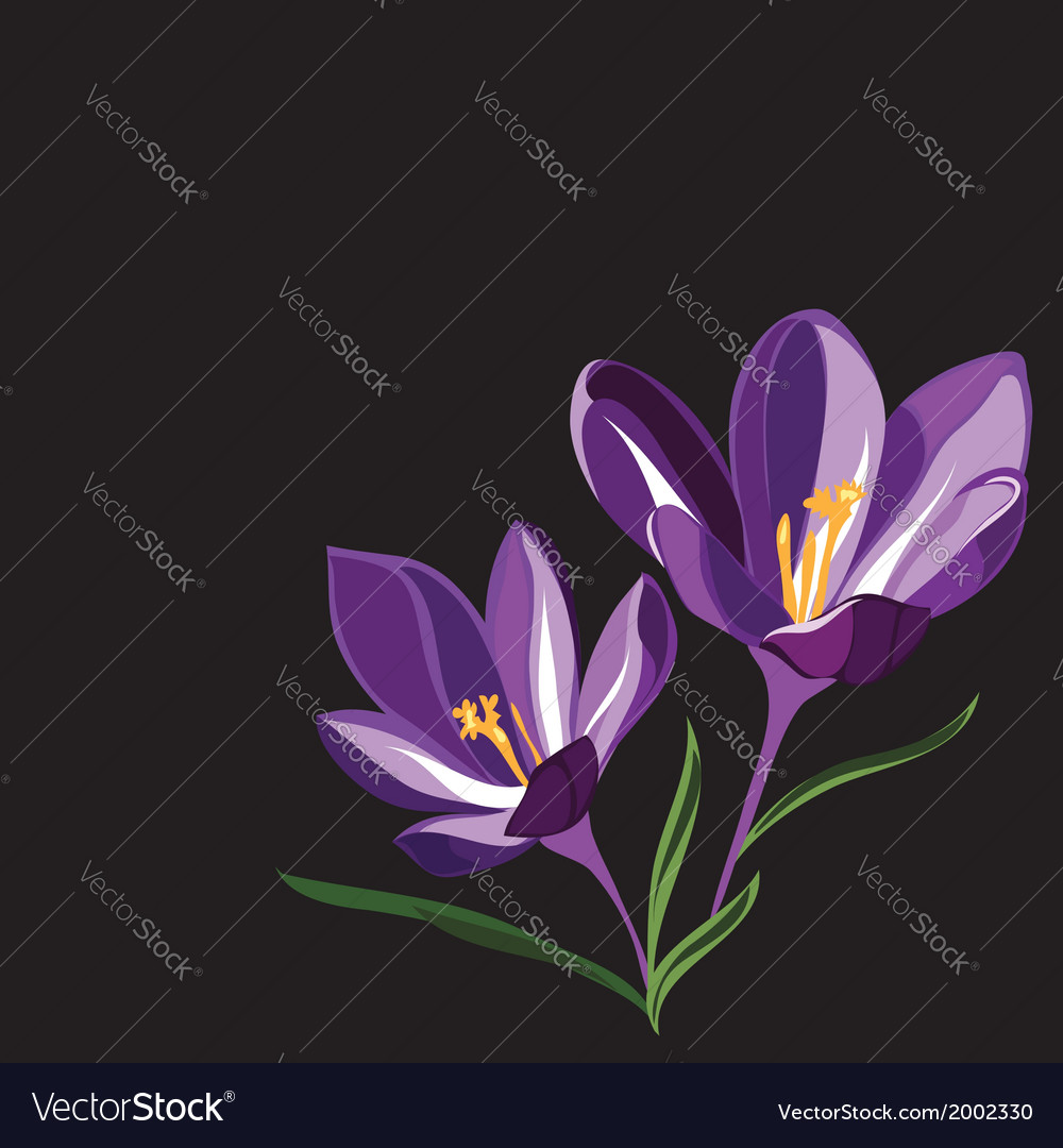 Background for design with spring flowers vector | Price: 1 Credit (USD $1)