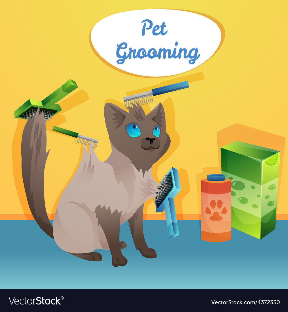 Cat character in groom salon vector | Price: 1 Credit (USD $1)
