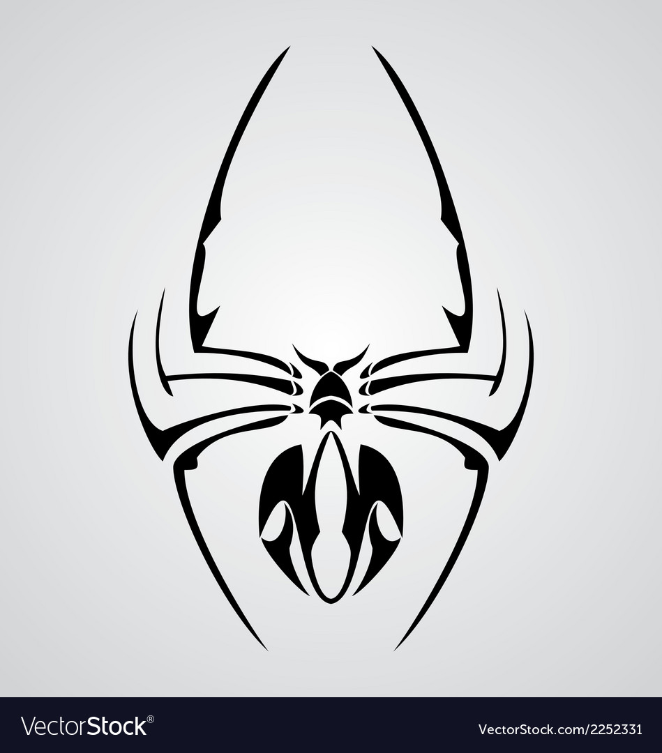Spider tattoo vector | Price: 1 Credit (USD $1)