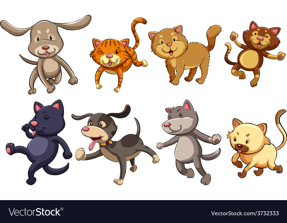 A group of playful cats and dogs vector | Price: 1 Credit (USD $1)