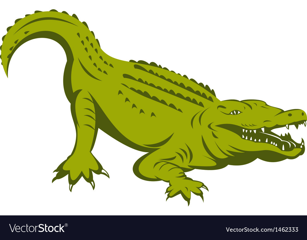 Alligator head vector | Price: 1 Credit (USD $1)
