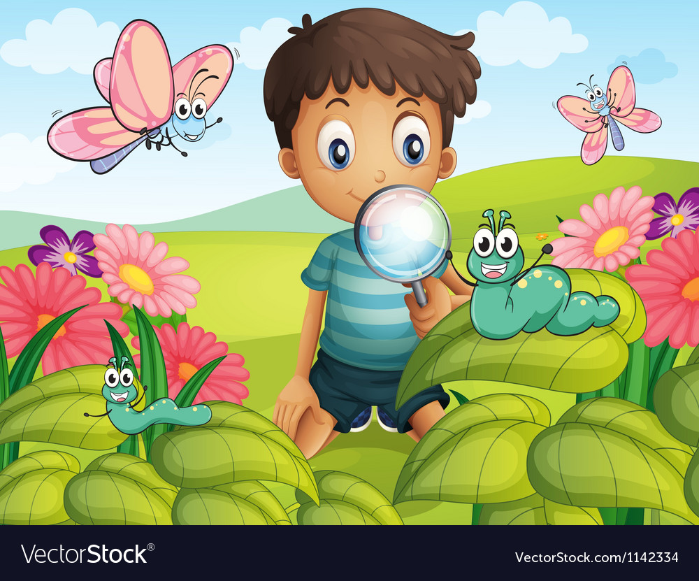A little boy in the garden vector | Price: 1 Credit (USD $1)